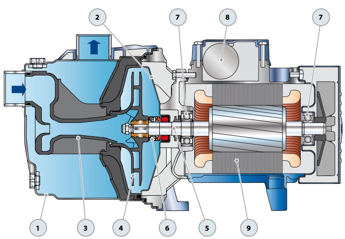 Конструкция самовсасывающего насоса Pedrollo JCR